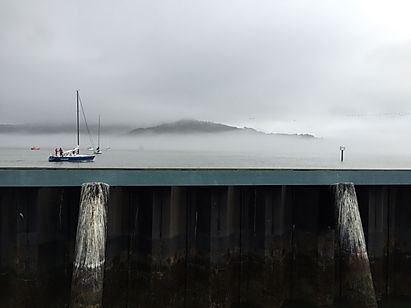Foggy Angel Island
