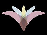 Canyon View Logo