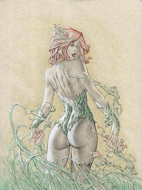 Ivy Booty