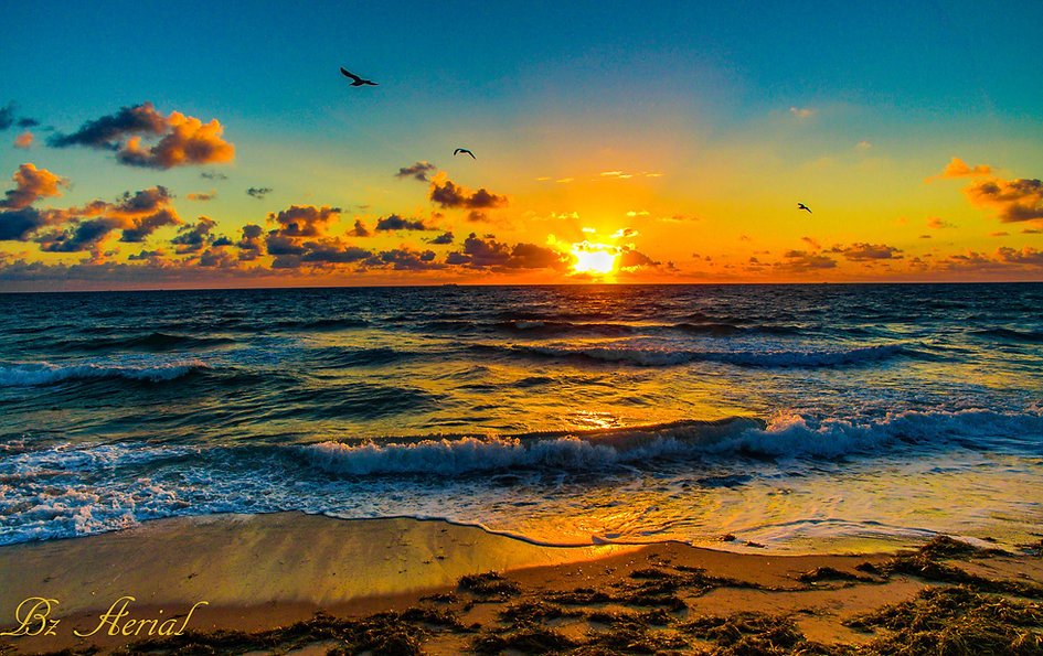Beach Sunrise4-20--2.jpg