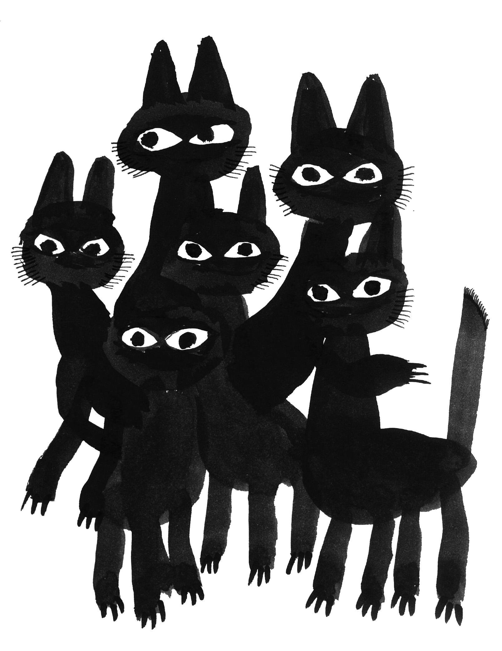 アイスランドの黒猫たち / Icelandic Black Cats