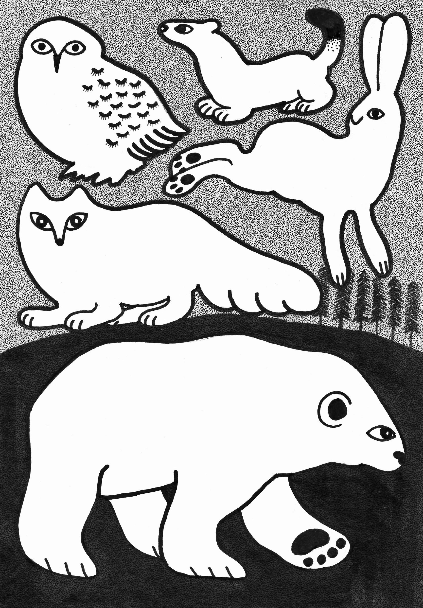 白い動物たち / Whit Animals