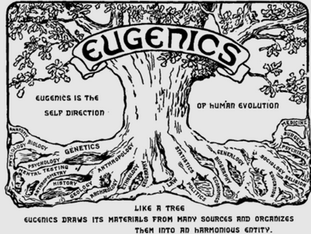 Capturing the American Psychological Association: The Engineering of Human Sexual Evolution