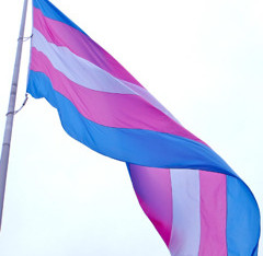 Constructing The Legal Lie Of The Transgender Child - Part II