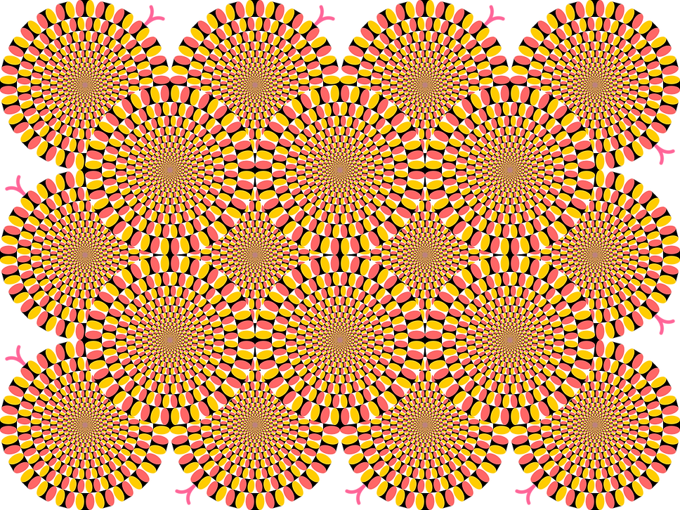 Peripheral_drift_illusion_rotating_snake