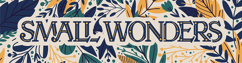 """""""Small Wonders"""" is written in serif text with simple floral designs in navy blue, yellow, and green"""