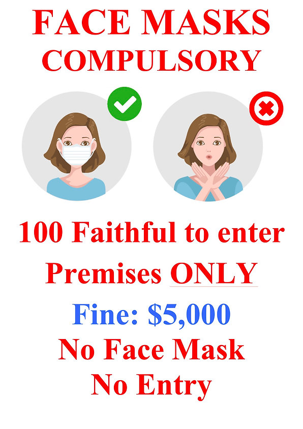 FACE MASKS 1-2.jpg
