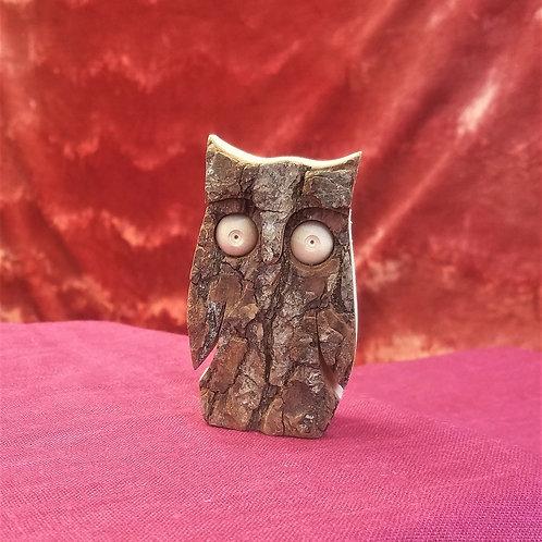 Owl in bark