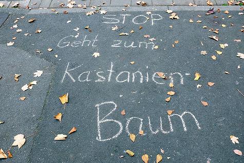 Kastanienbaum©KORIDASS-33.jpg