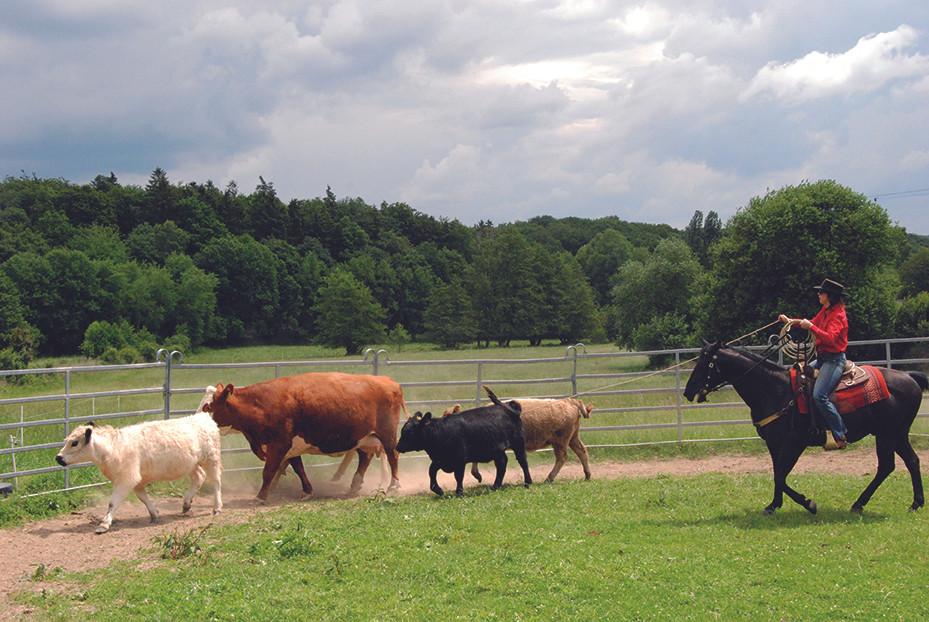 Ranchreiten-99.JPG