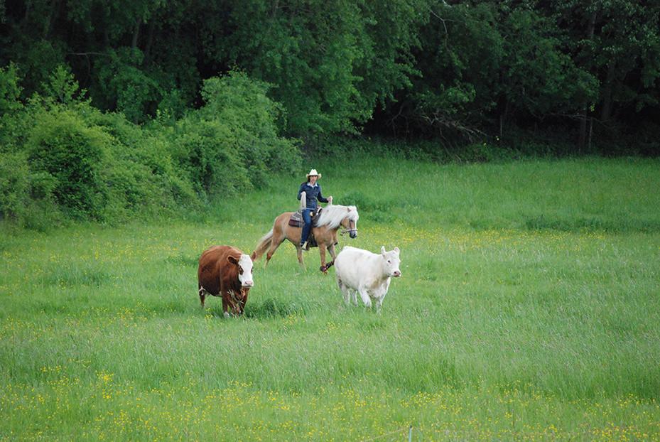 Ranchreiten-33.jpg