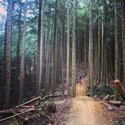 _adam_hitch doing some levitation on the Pre-work ride #mtb #brownpow