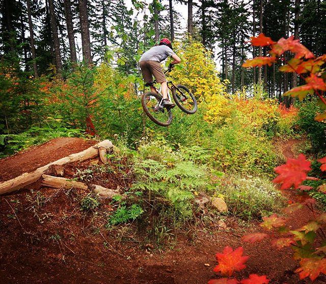 Them fall colors!  #biking #mtb #cycling #mountainbike #hoodriver #postcanyon #leaves #colors