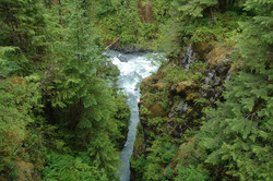 View atop the lofty Hoh river crossing