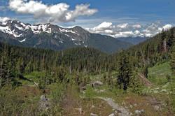 Glacier Medows