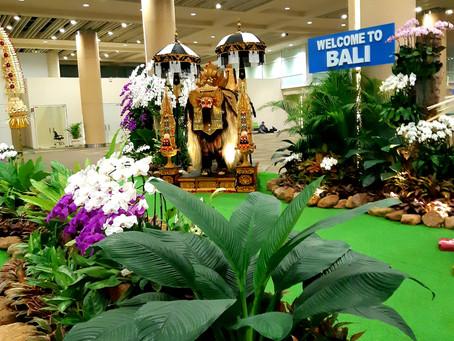 Dienoraštis iš Balio: atostogų būsena įjungta