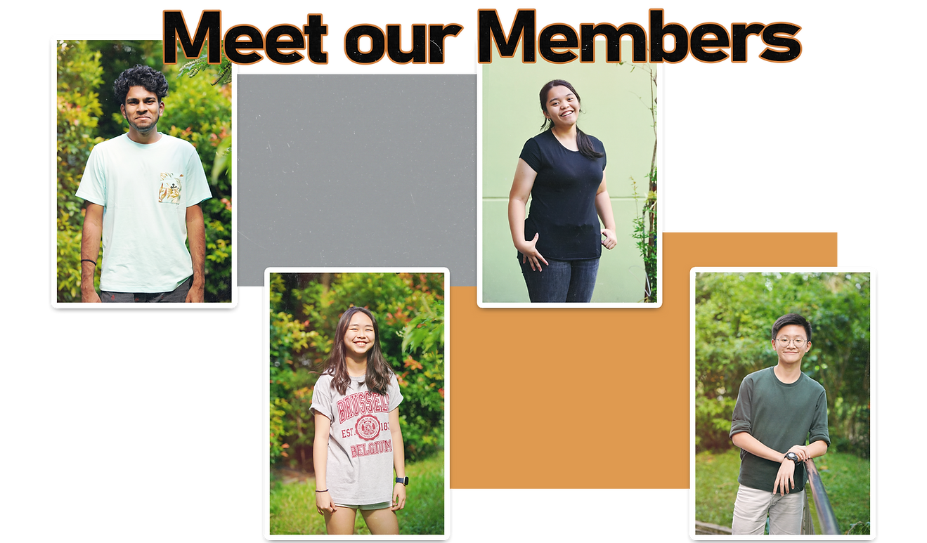 Meet our members (no text).png