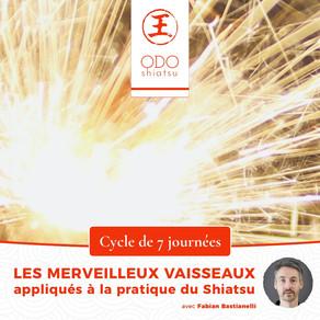 Les Merveilleux Vaisseaux ou Méridiens Extraordinaires. Enseignement. Pratique Shiatsu.
