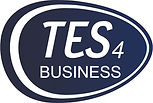 TES4 BUSINESS.jpg