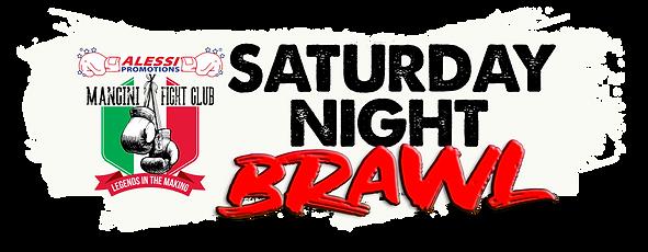 SAT NIGHT BRAWL LOGO BLANK.png