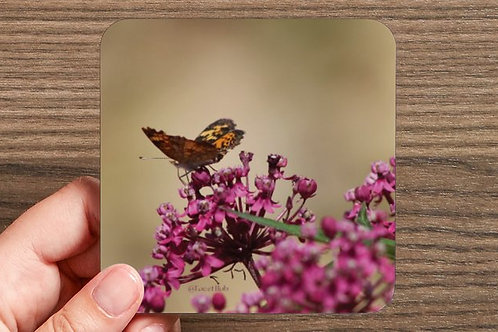 Monarch Butterfly Coaster- Seney Wildlife Refuge