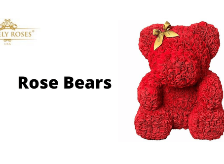 Rose Bears Offer Timeless Affection