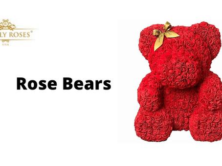 Rose Bears Offer Timeless Affection