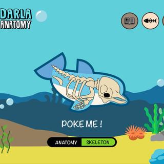 Darla Anatomy 2