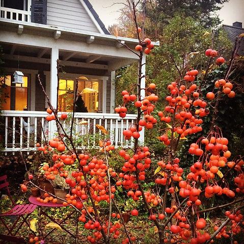 14 Ideen für einen zauberhaften Garten im Winter