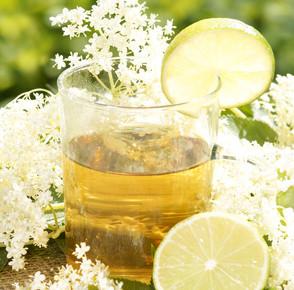 HOLUNDERBLÜTEN-TEE *Wundermittel, Sommerandenken und ganz viel Genuss*