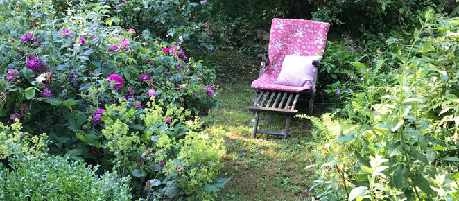 11 TIPS FOR A LOW-MAINTENANCE GARDEN | Less work, more fun
