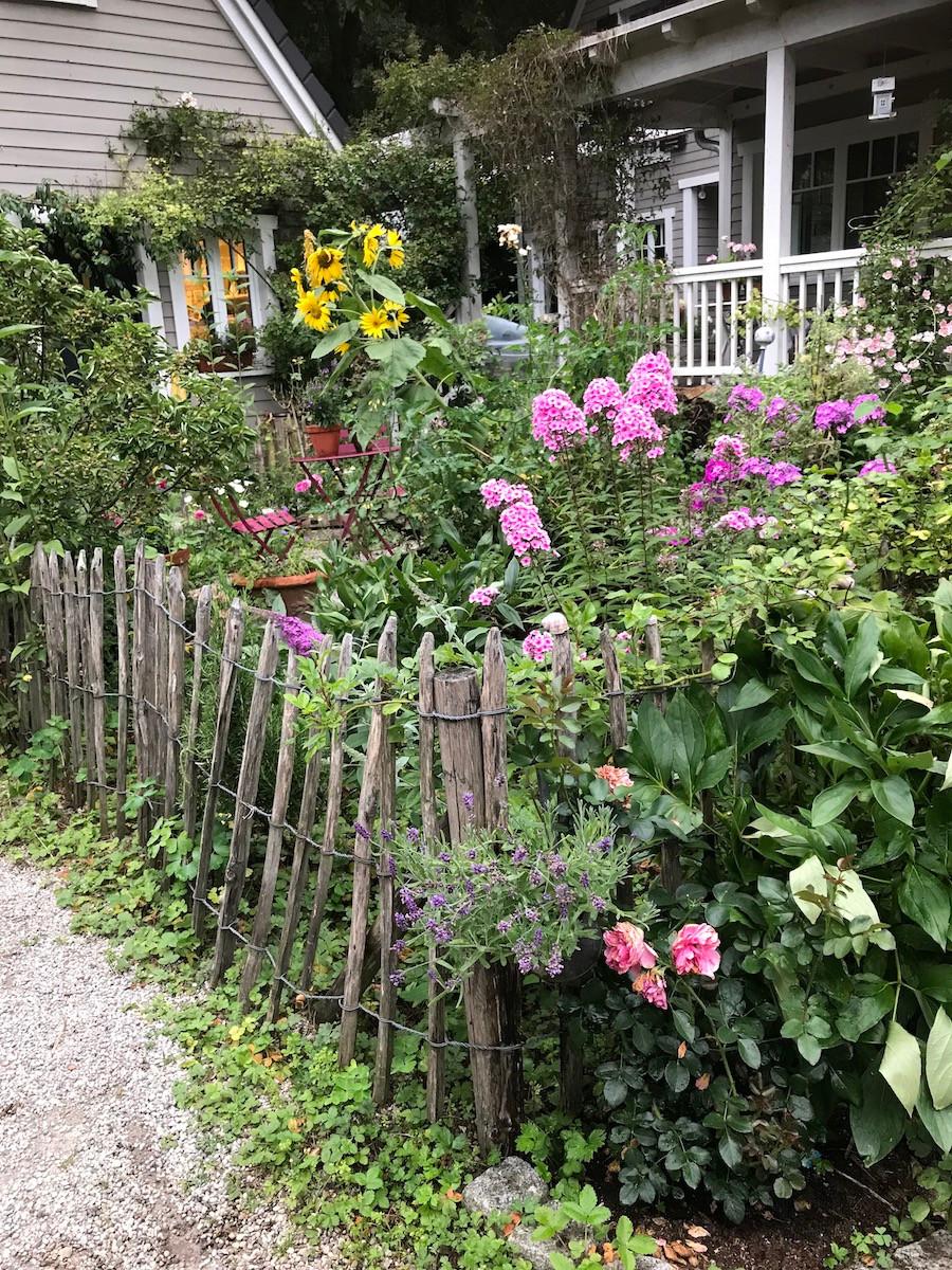 Bauerngarten vor Haus mit Phlox und Sonnenblumen