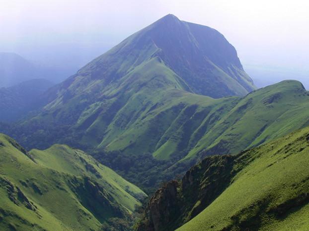 Mt Nimba & Friends