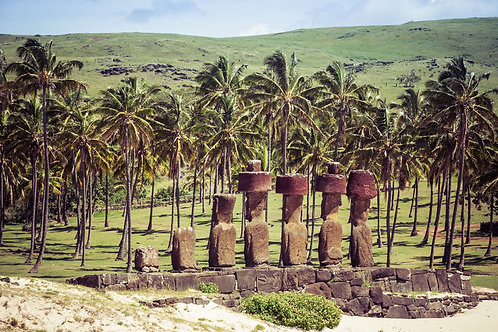 Tropical Moai