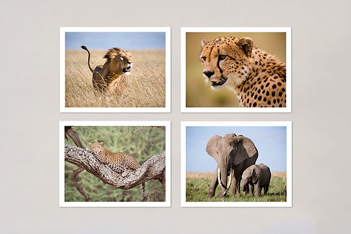 African Wildlife Note Cards, Set of 4