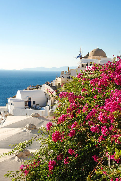 Beyond the Flowers | Santorini Greece Photo Print | Tammy Riegel Photography
