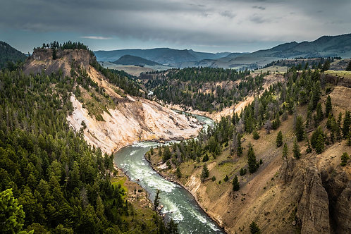 Winding River | River in the mountains in Yellowstone National Park | Yellowstone Photo Print | Tammy Riegel Phortography