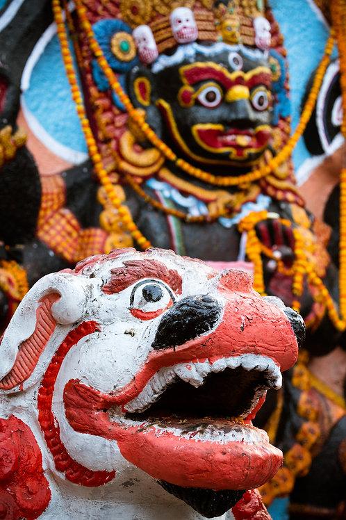Guarding Kali