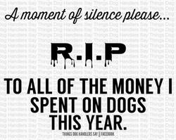 RIP to Dog Money