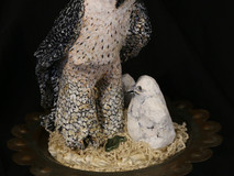 Peregrine Falcon and Nestlings
