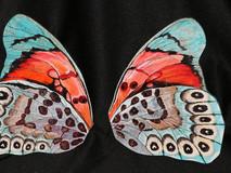 Wings Waiting for Caterpillar