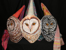 Owl Princesses