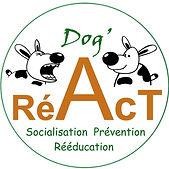 logo dogreact.jpg