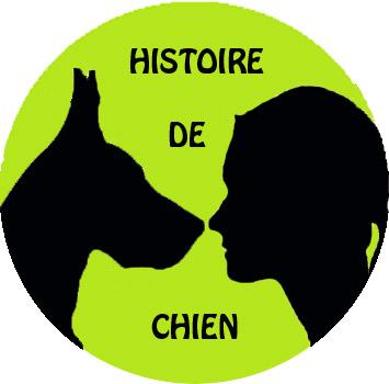 Histoire de chien