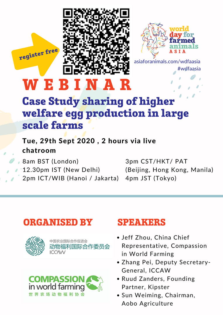 Case Study sharing of higher welfare egg production in large scale farms