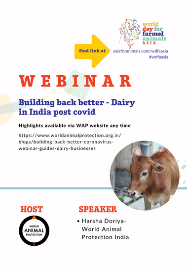 Building back better - Dairy in India post covid