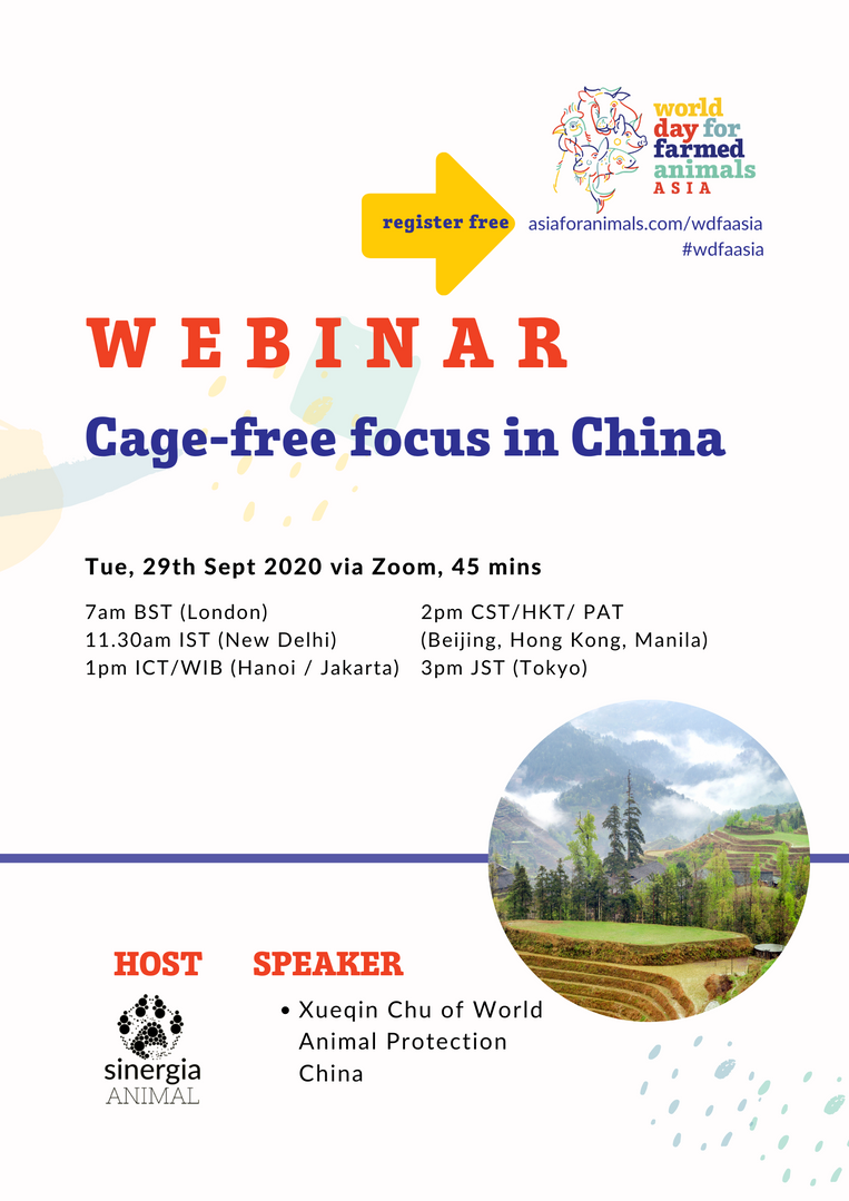 Cage-free focus in China