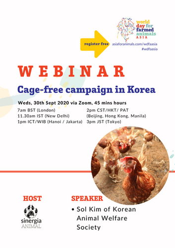 Cage-free campaign in Korea