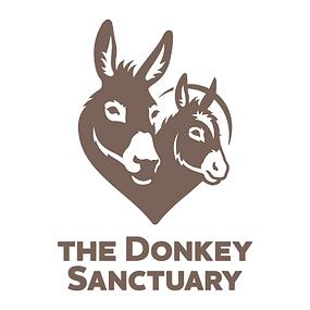 donkeysanctuary