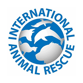 internationalanimalrescue